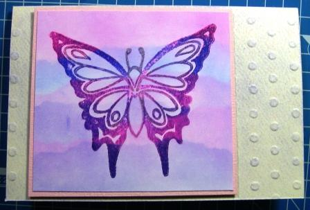 Chalked Butterfly